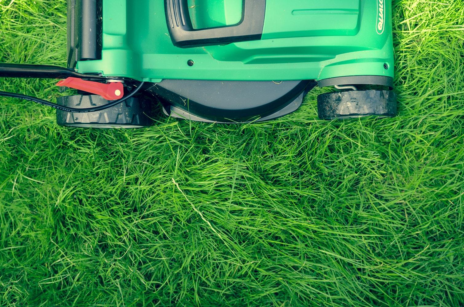 gräsklippning på timmer, semester