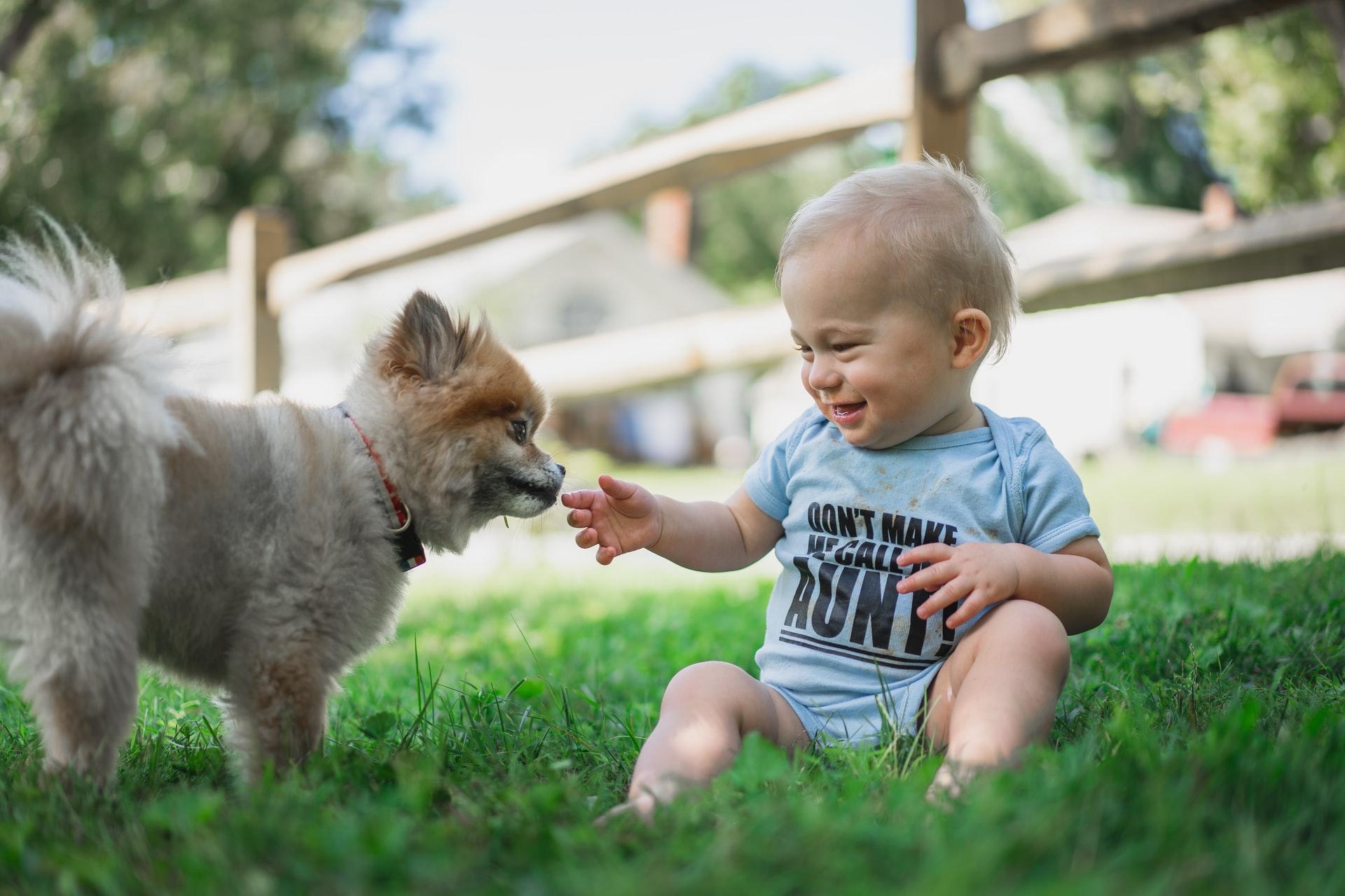 barn med hunden