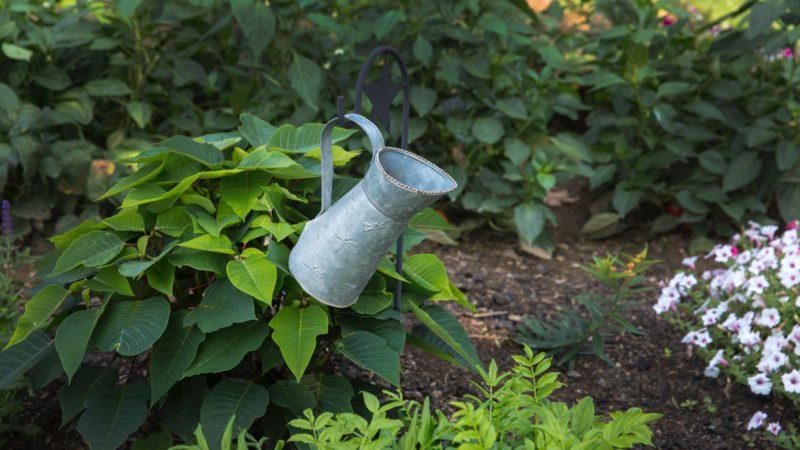 att odla är något vi gjort sedan civilisationens början, men den har också förändrats konstant sedan dess