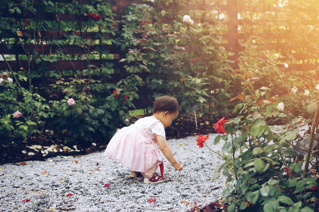 Ett barn plockar stenar i en trädgårdsgång