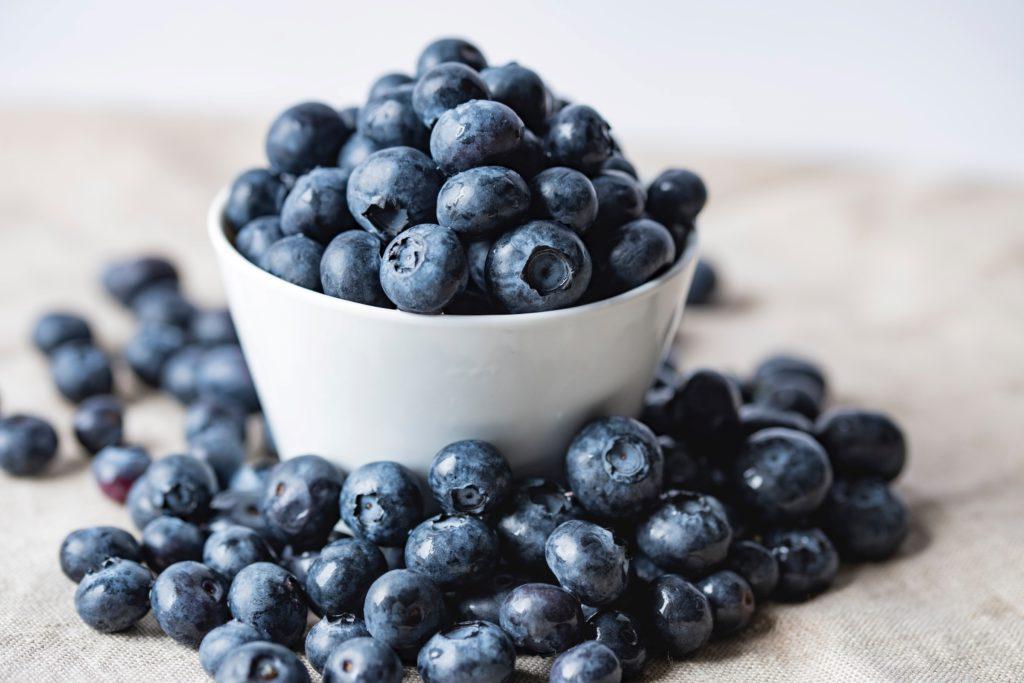 Odla egna blåbär för att kunna servera till sommarens desserter