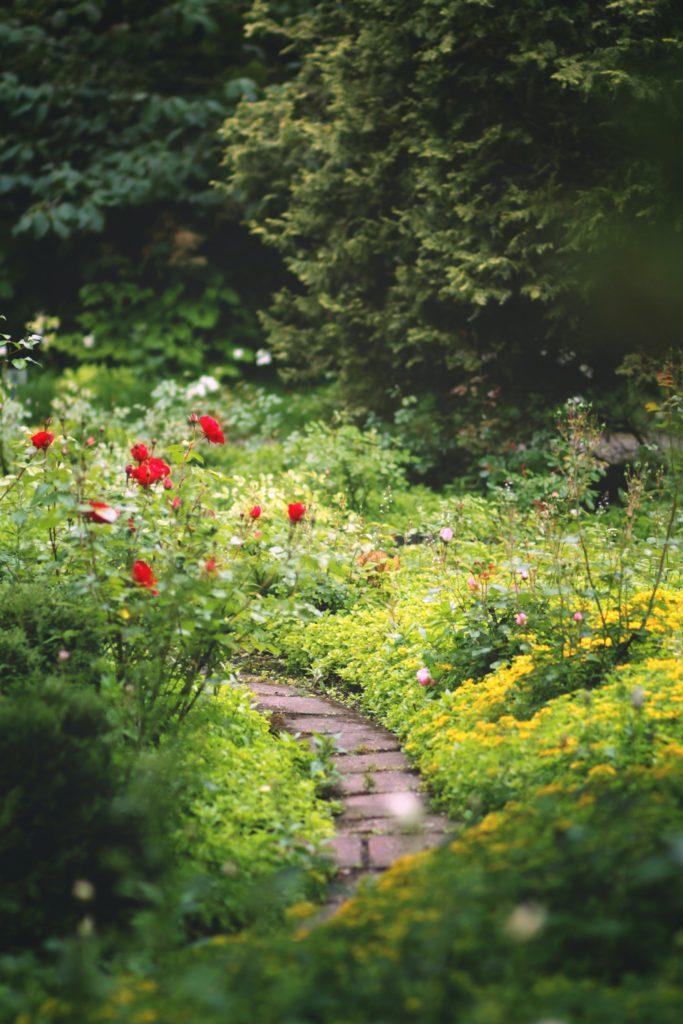 olika gångar, eller 'walkways', finns det supermycket trädgårdsinspiration för